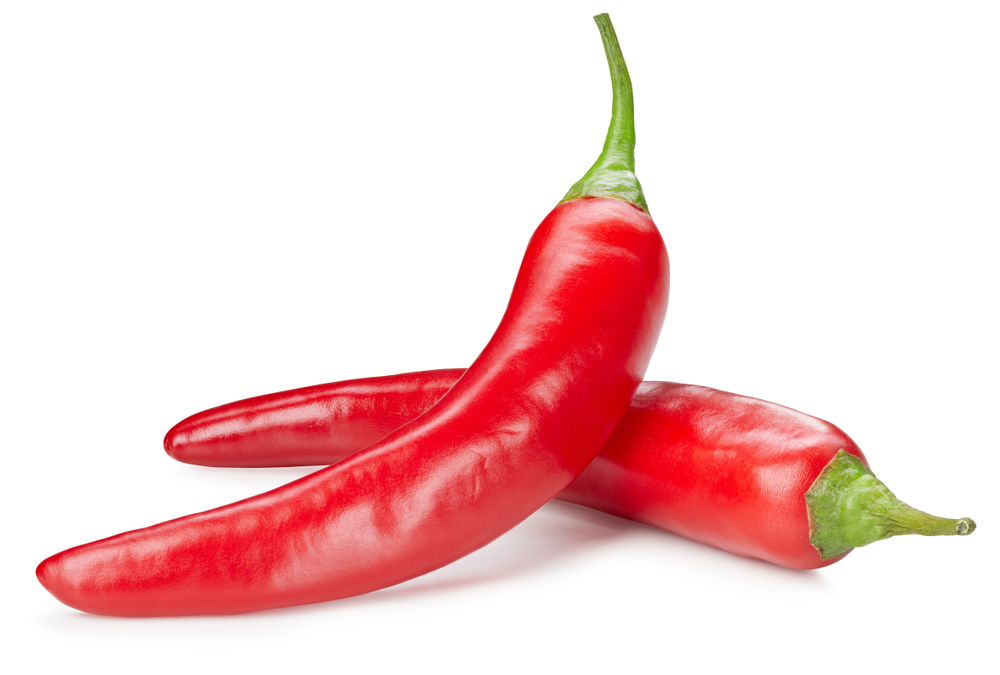 Chili pepper isolated on a white background. Chili hot pepper clipping path