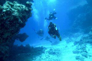 dive, underwater, sea